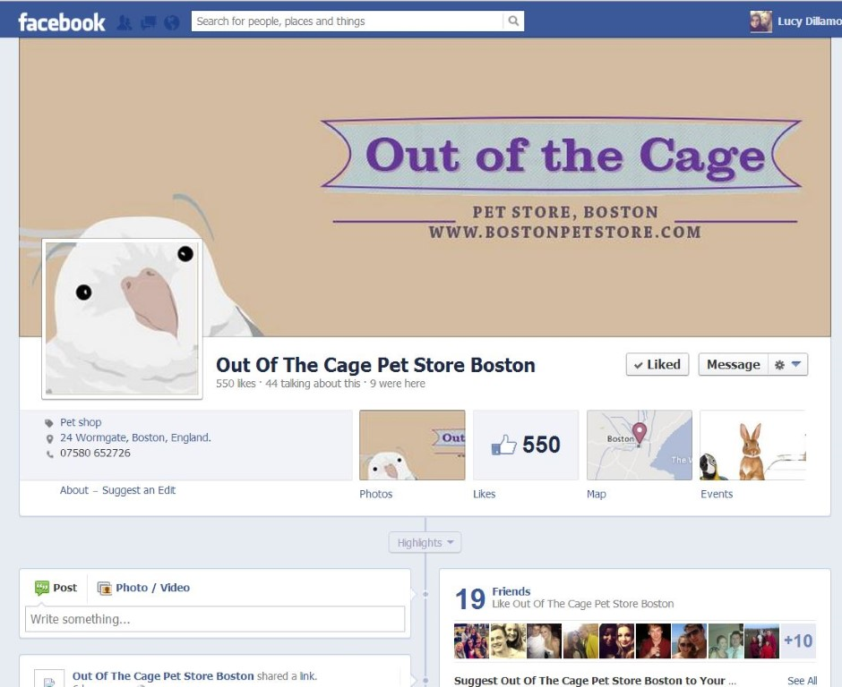 Out of the Cage Pet Store Boston – Maintenance Page & Facebook