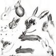 Sketching Sooty