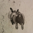 Mono printing Bunnies