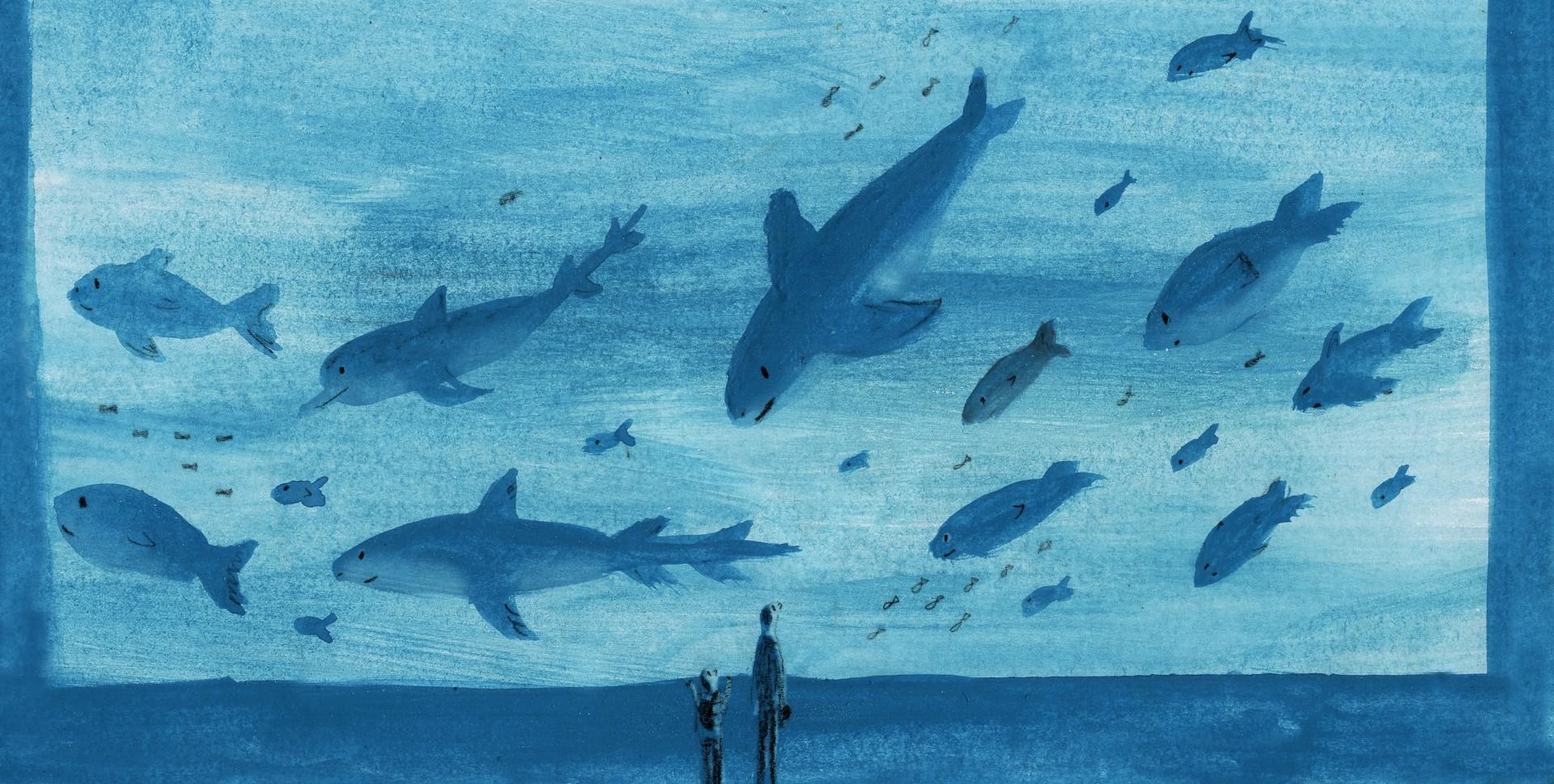 aquarium-jpg-2-large