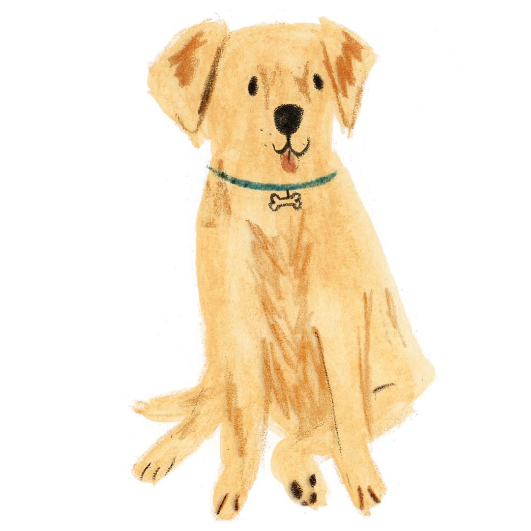dog3 (Large)