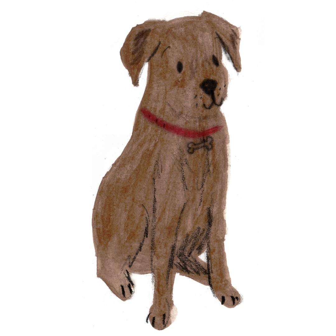 dog4 (Large)