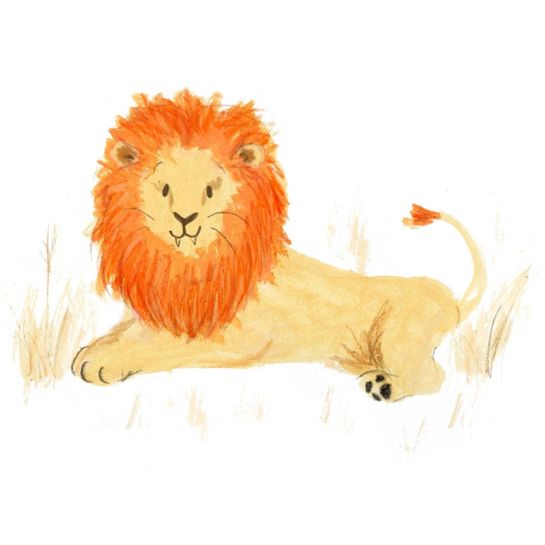 lion-(Large)