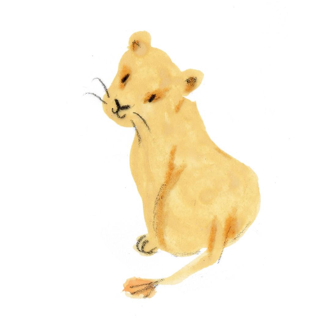 lion2 (Large)