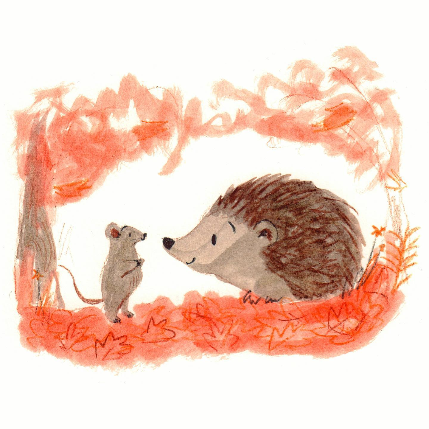 Hedgehog and Mouse Lucy Dillamore Illustration