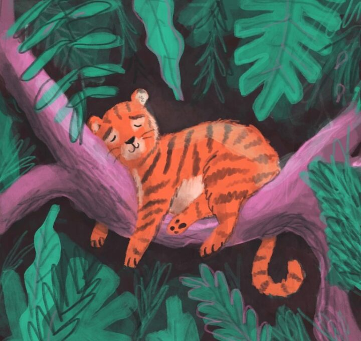 Tiger Jungle Lucy Dillamore