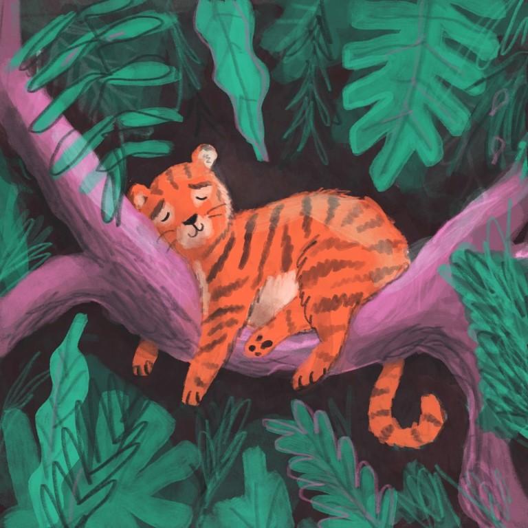 Tiger Jungle Lucy Dillamore